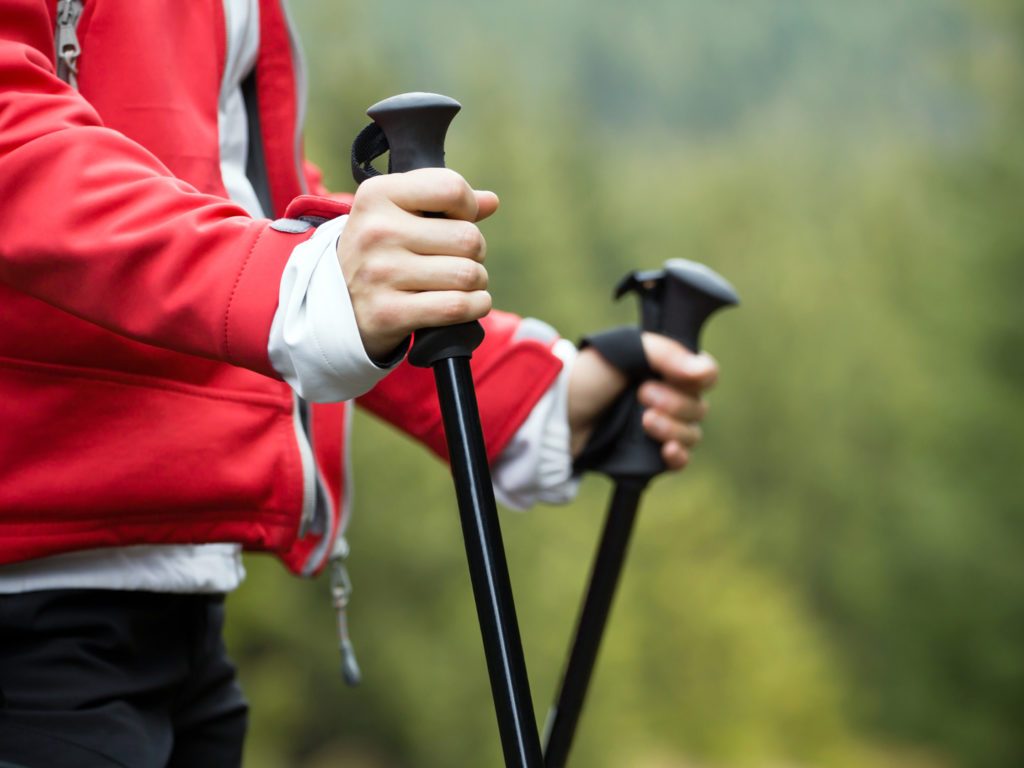 Where To Buy Walking Sticks Near Me